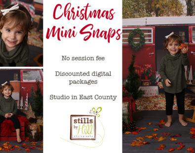 Christmas Mini Snaps™